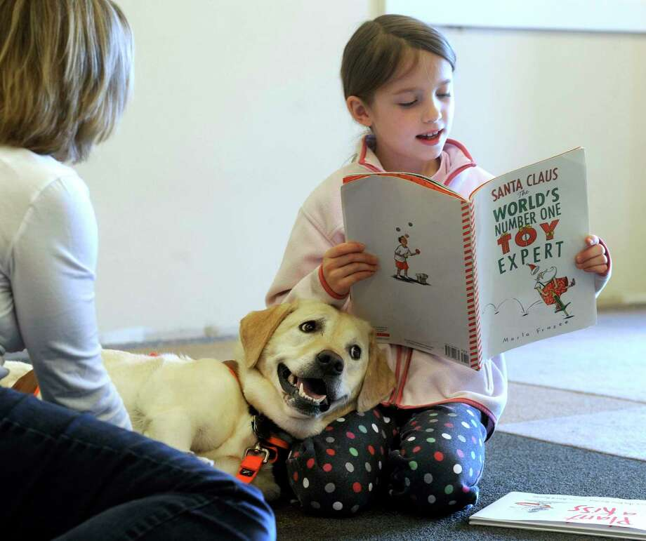 Hannah Lishawa, 7, of Ridgefield, Conn., reads to Lily, a ROAR therapy dog belonging to Carol Schwanhausser, 60, also of Ridgefield, Saturday, Nov. 2, 2013 at the Ridgefield Library. The 15 minute sessions were offered to children ages 4 to 8 from 11:15am to 12:45p.m. Photo: Carol Kaliff / Carol Kaliff / The News-Times