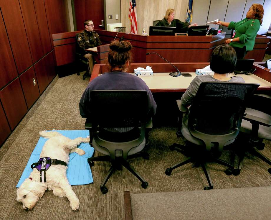 Izzy rests on the floor next to Marley, a juvenile sitting at a table in front of attorney referee Karen Transit at the Macomb County Juvenile Court in downtown Mt. Clemens on Thursday, Dec. 29, 2019. Izzy, a comfort dog, is often seen in juvenile court hearings as a stress relief for kids facing attorney referees in various proceedings. (Eric Seals/Detroit Free Press/TNS) / Detroit Free Press