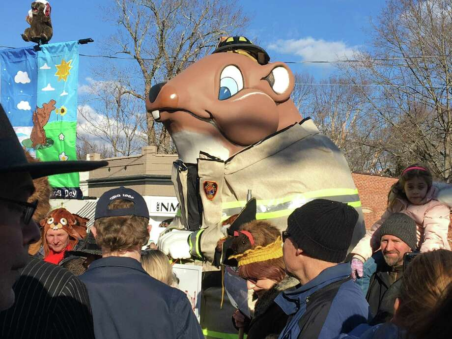 Hundreds of people lined Main Street in Essex Jan. 26, 2020, to bang on pots and pans, welcome larger-than-life town mascot Essex Ed, wear furry critter hats and beat back winter at the annual Essex Ed Groundhog Day Parade. Photo: Mark Zaretsky / Hearst Connecticut Media /
