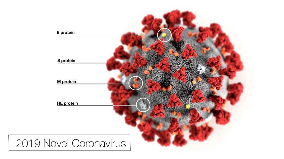 This illustration, created at the Centers for Disease Control and Prevention (CDC), reveals ultrastructural morphology exhibited by the coronavirus. (Courtesy Photo)