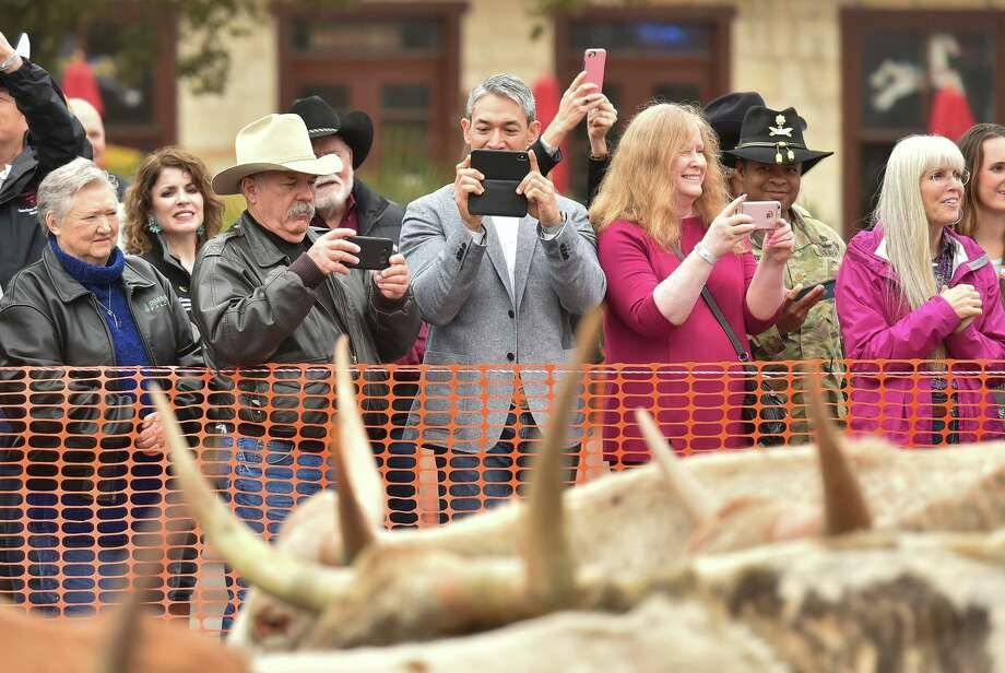 Mayor Ron Nirenberg (gray jacket) shoots images with his phone during the 12th Annual Western Heritage Parade and Cattle Drive through downtown San Antopno Saturday. Photo: Robin Jerstad/Contributor, Photo Correspondent / San Antonio Express News / ROBERT JERSTAD