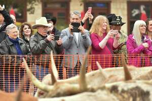 Mayor Ron Nirenberg (gray jacket) shoots images with his phone during the 12th Annual Western Heritage Parade and Cattle Drive through downtown San Antopno Saturday.
