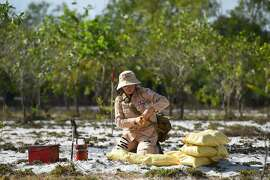 This picture taken on January 6, 2020 shows a member of an all-female demining team preparing to detonate unexploded ordnance at a landmine site in the Trieu Phong district in Quang Tri province. - More than 6.1 million hectares of land in Vietnam remain blanketed by unexploded munitions -- mainly dropped by US bombers -- decades after the war ended in 1975. (Photo by Nhac NGUYEN / AFP) / TO GO WITH Vietnam-US-weaponry-landmines,FOCUS by Tran Thi Minh Ha (Photo by NHAC NGUYEN/AFP via Getty Images)