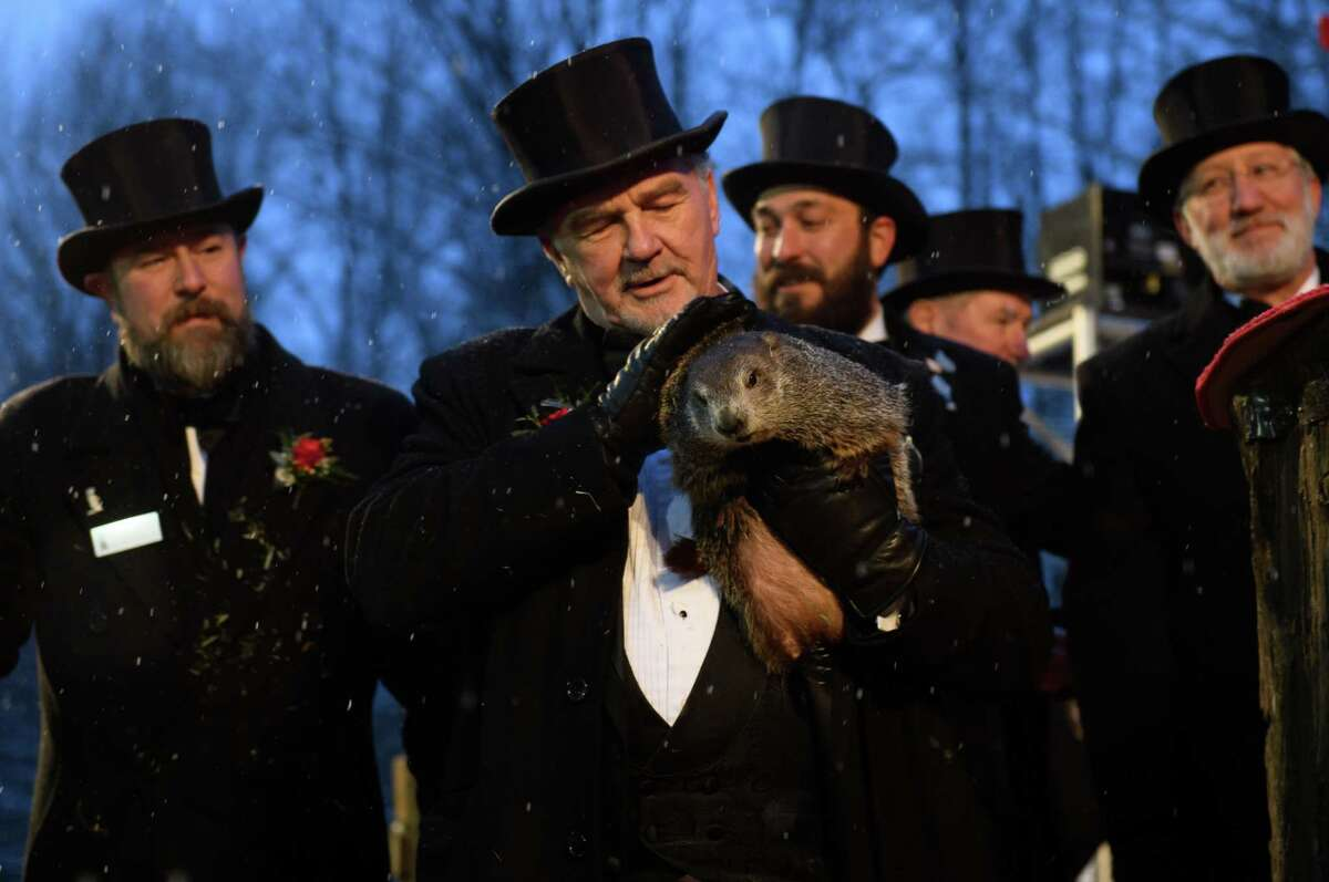 PUNXSUTAWNEY, PA - FEBRUARY 02: Groundhog handler John Griffiths holds Punxsutawney Phil, who did not see his shadow, predicting an early or late spring during the 134th annual Groundhog Day festivities on February 2, 2020 in Punxsutawney, Pennsylvania. Groundhog Day is a popular tradition in the United States and Canada. A crowd of upwards of 20,000 people spent a night of revelry awaiting the sunrise and the groundhog's exit from his winter den. If Punxsutawney Phil sees his shadow he regards it as an omen of six more weeks of bad weather and returns to his den. Early spring arrives if he does not see his shadow, causing Phil to remain above ground. (Photo by Jeff Swensen/Getty Images)
