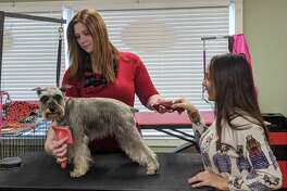 Shannon Powell, owner of A Muddy Paw, left, now provides grooming services at Unleashed and Furry Friends, owned by and Jasmin Cruz, right.