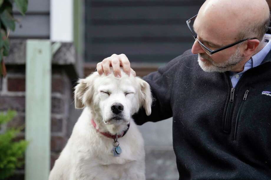 Open your heart to an older dog or cat, and there is a good chance you will fall in love with them, and they will be so happy to be in your life and have a home again. Photo: Elaine Thompson /Associated Press / Copyright 2019 The Associated Press. All rights reserved