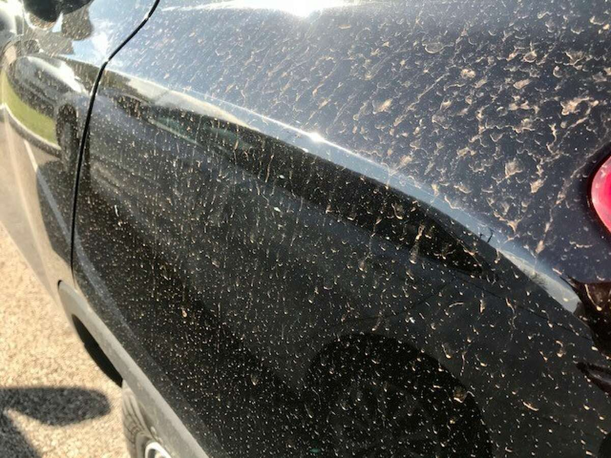 A number of Houston residents reported seeing thin layers of red dust on their cars Thursday morning.