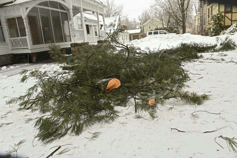 A large tree limb is seen fallen between two homes on Union Ave. on Friday, Feb. 7, 2020 in Saratoga Springs, N.Y. Freezing temperatures caused cold rain to freeze on trees. (Lori Van Buren/Times Union)