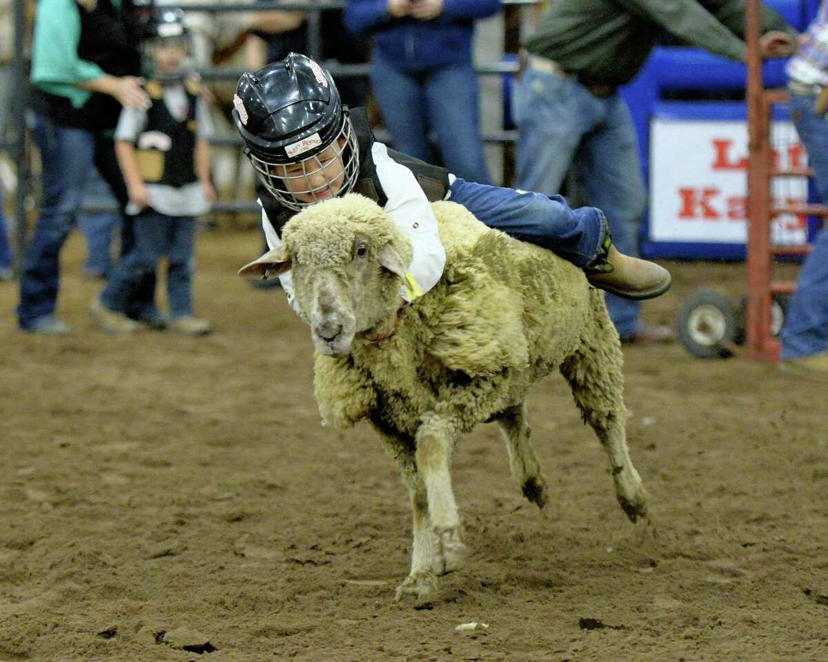 A child participates in the mutton bustin' competition at the 76th Annual Katy ISD FFA Livestock Show and Katy Rodeo at the Gerald D. Young Agricultural Sciences Center in Katy, TX on Thursday, February 14, 2019.