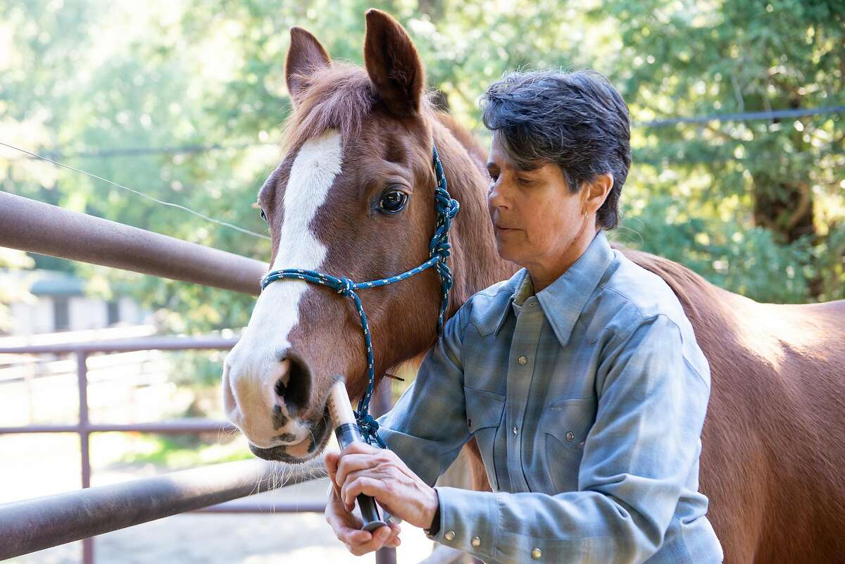 Renee Dyer, who had a dream freelance job as a master handler for a nonprofit that does equine therapy with dent patients before AB5 went into effect, gives medicine to her horses at Rancho de Los Amigos where she boards her horses on February 7, 2020 in Castro Valley, Calif.