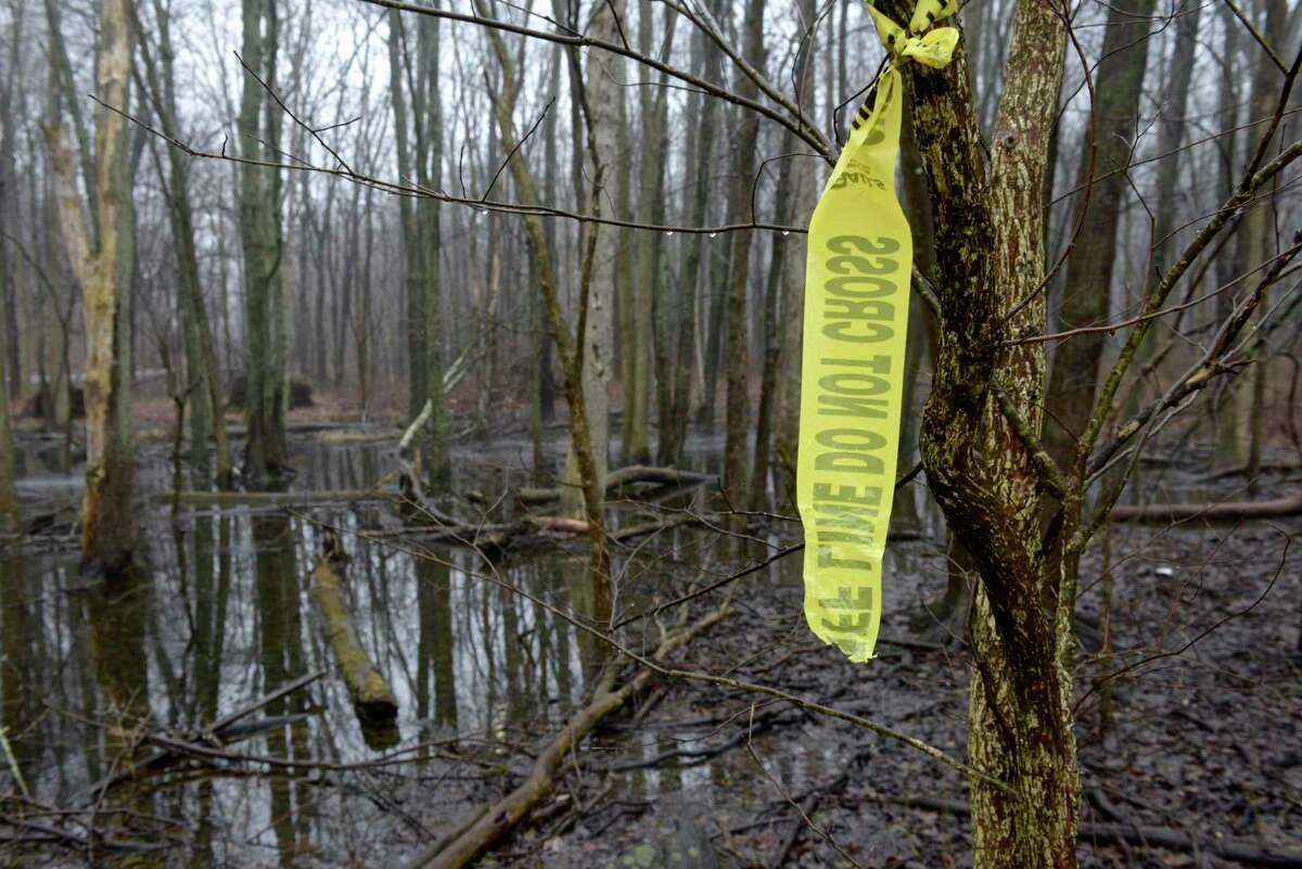 Torn Sheriff's tape in a State Wildlife Management Area behind the Putnam Diner Restaurant, in Patterson, NY, where human remains were found by a hunter on February 1st of this year. The diner parking lot was the location where a missing Danbury woman's car was found two years ago. Tuesday, February 11, 2020, in Patterson, NY.