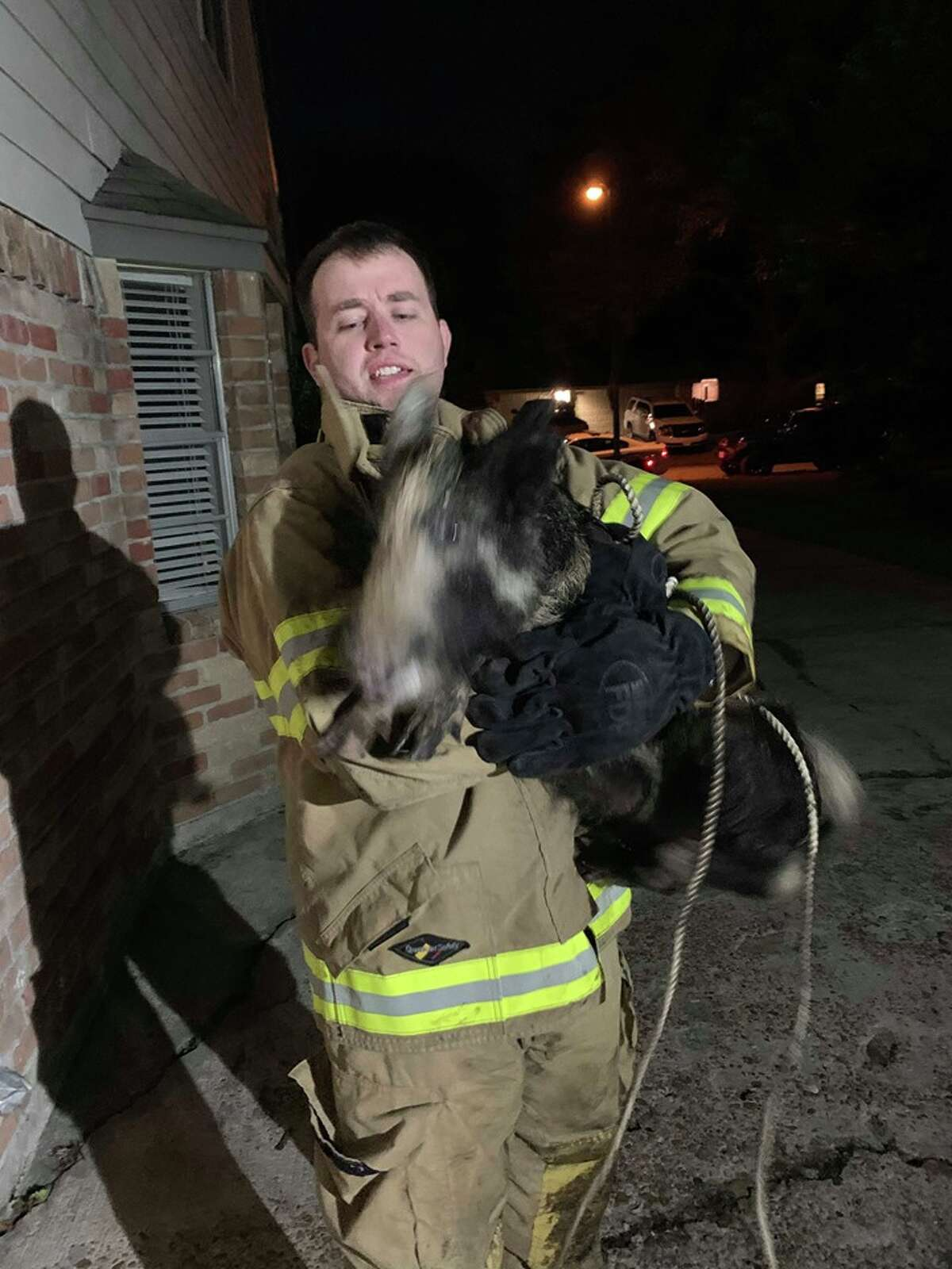 After a feral hog chased his 14-year-old daughter last Friday, Atascocita resident David Powe wrangled the animal himself.