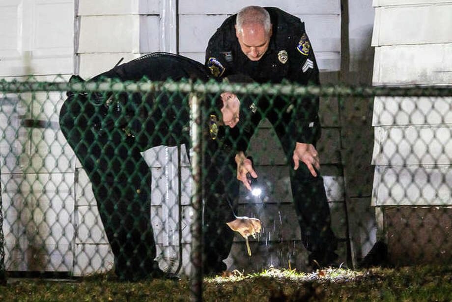 Alton police officers gather evidence Wednesday night after a shooting in the 2500 block of Salu Street. Photo: Nathan Woodside | The Telegraph
