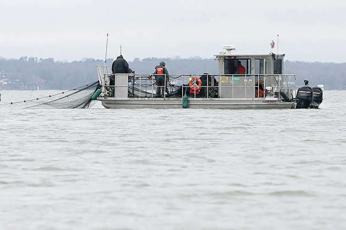Nets are put into Smith Bay on Kentucky Lake near Golden Pond, Kentucky, during a roundup of Asian carp. The work is part of a 15-year battle to halt the advance of the invasive fish, which threaten to upend aquatic ecosystems, starve out native fish and wipe out endangered mussel and snail populations along the Mississippi River and dozens of tributaries.