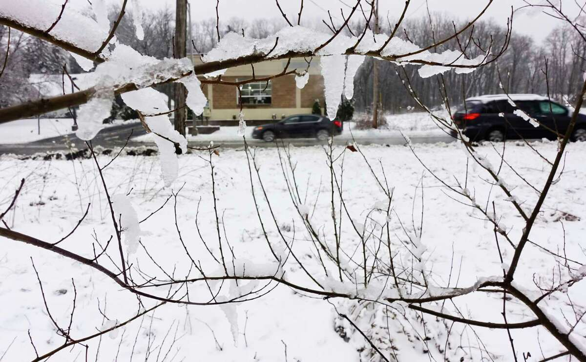 Snow clings to branches of a tree along Albany Shaker Road on Thursday, Feb. 13, 2020, in Colonie, N.Y. (Paul Buckowski/Times Union)