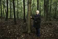 """A March 4 screening of the 2017 documentary """"Judi Dench: My Passion for Trees,"""" co-hosted by Stamford's Avon Theatre and Greenwich Tree Conservancy, will include a post-film Q&A by New York Botanical Garden's Todd A. Forrest."""