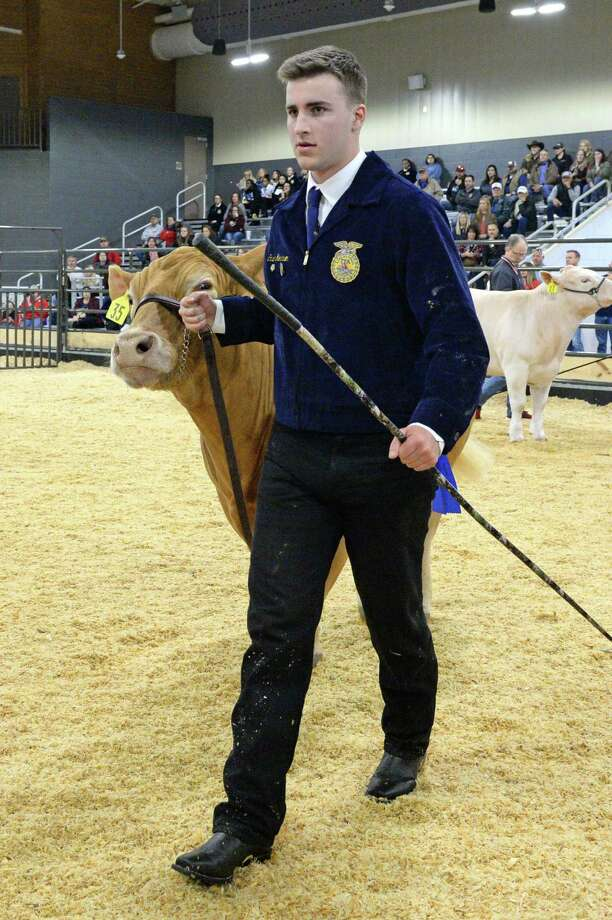 Cash Morrison of Seven Lakes High School shows his steer during the 77th Annual Katy ISD FFA Livestock Show and Katy Rodeo at the Gerald D. Young Agricultural Sciences Center in Katy on Thursday, Feb. 13. Photo: Craig Moseley, Houston Chronicle / Staff Photographer / ©2020 Houston Chronicle