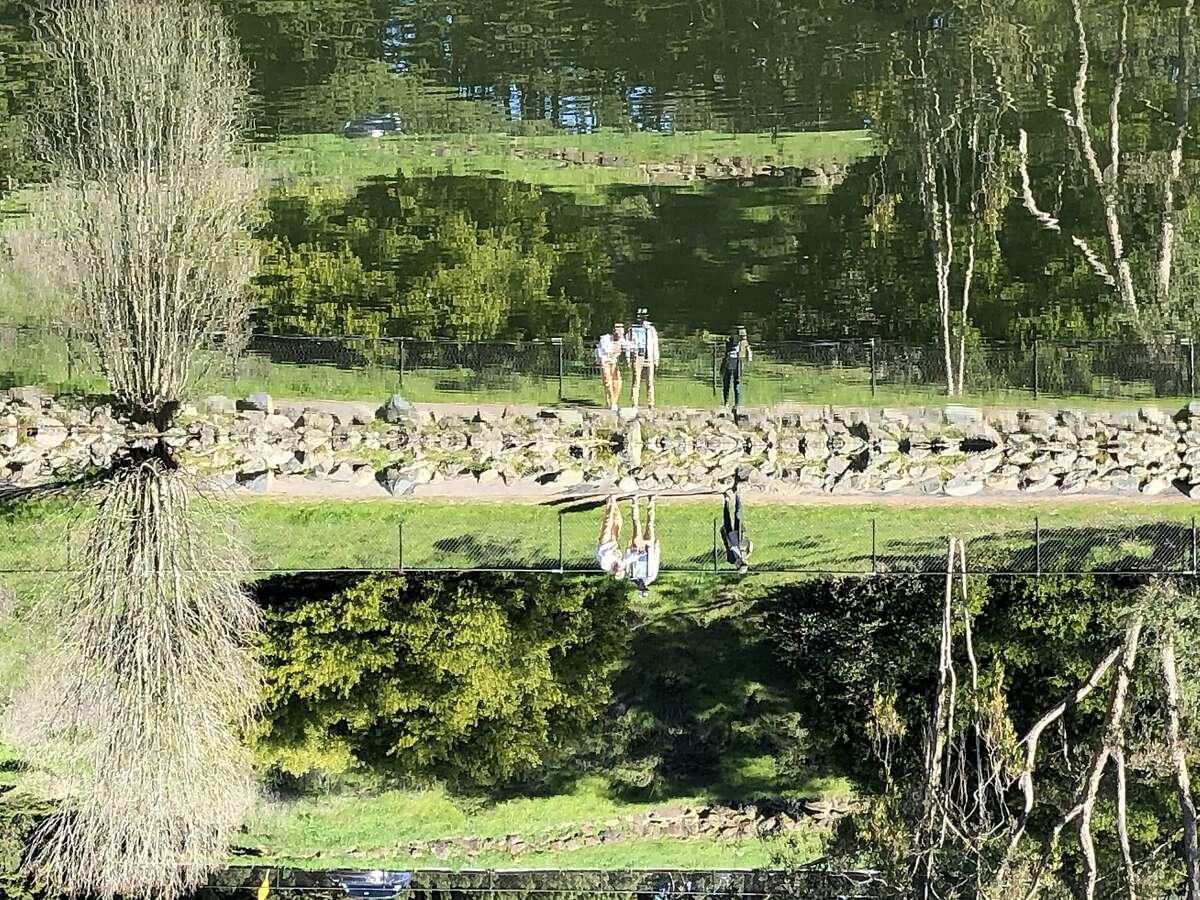 Upper reservoir in McLaren park.
