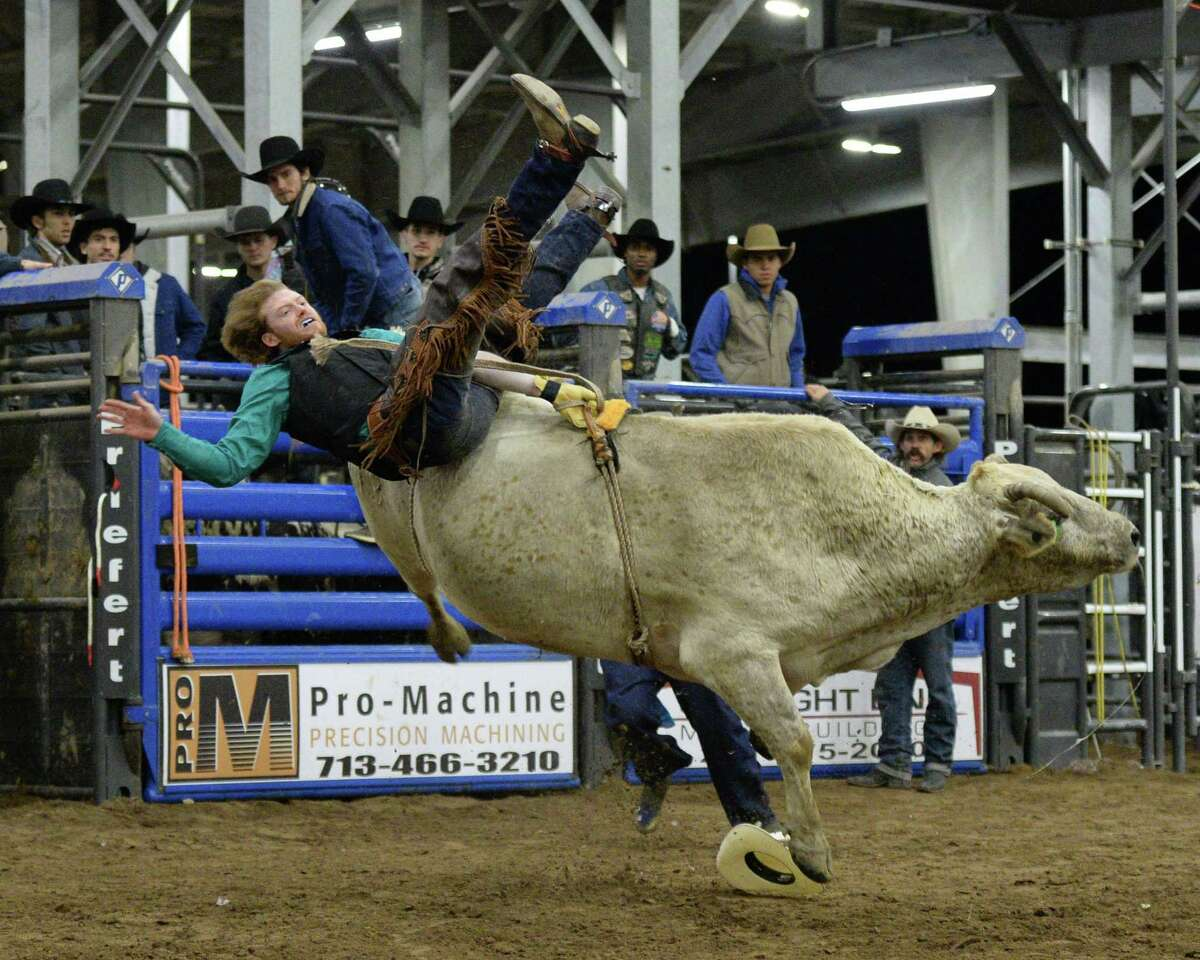 A rider participates in the bull riding competition during the 77th Annual Katy ISD FFA Livestock Show and Katy Rodeo at the Gerald D. Young Agricultural Sciences Center in Katy, TX on Thursday, February 13, 2020.