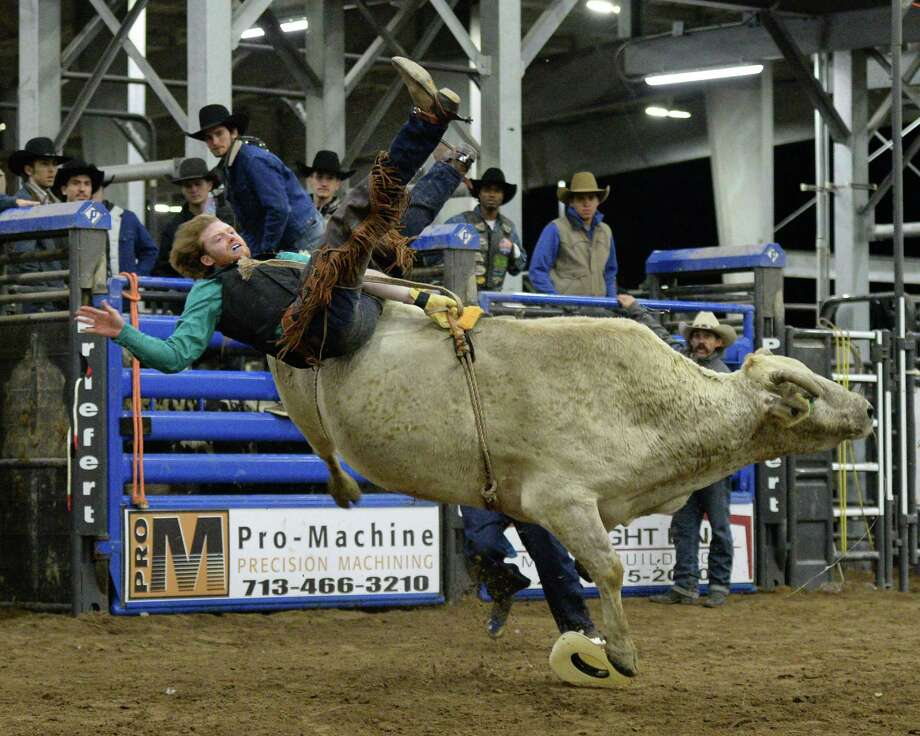 A rider participates in the bull riding competition during the 77th Annual Katy ISD FFA Livestock Show and Katy Rodeo at the Gerald D. Young Agricultural Sciences Center in Katy, TX on Thursday, February 13, 2020. Photo: Craig Moseley, Houston Chronicle / Staff Photographer / ©2020 Houston Chronicle