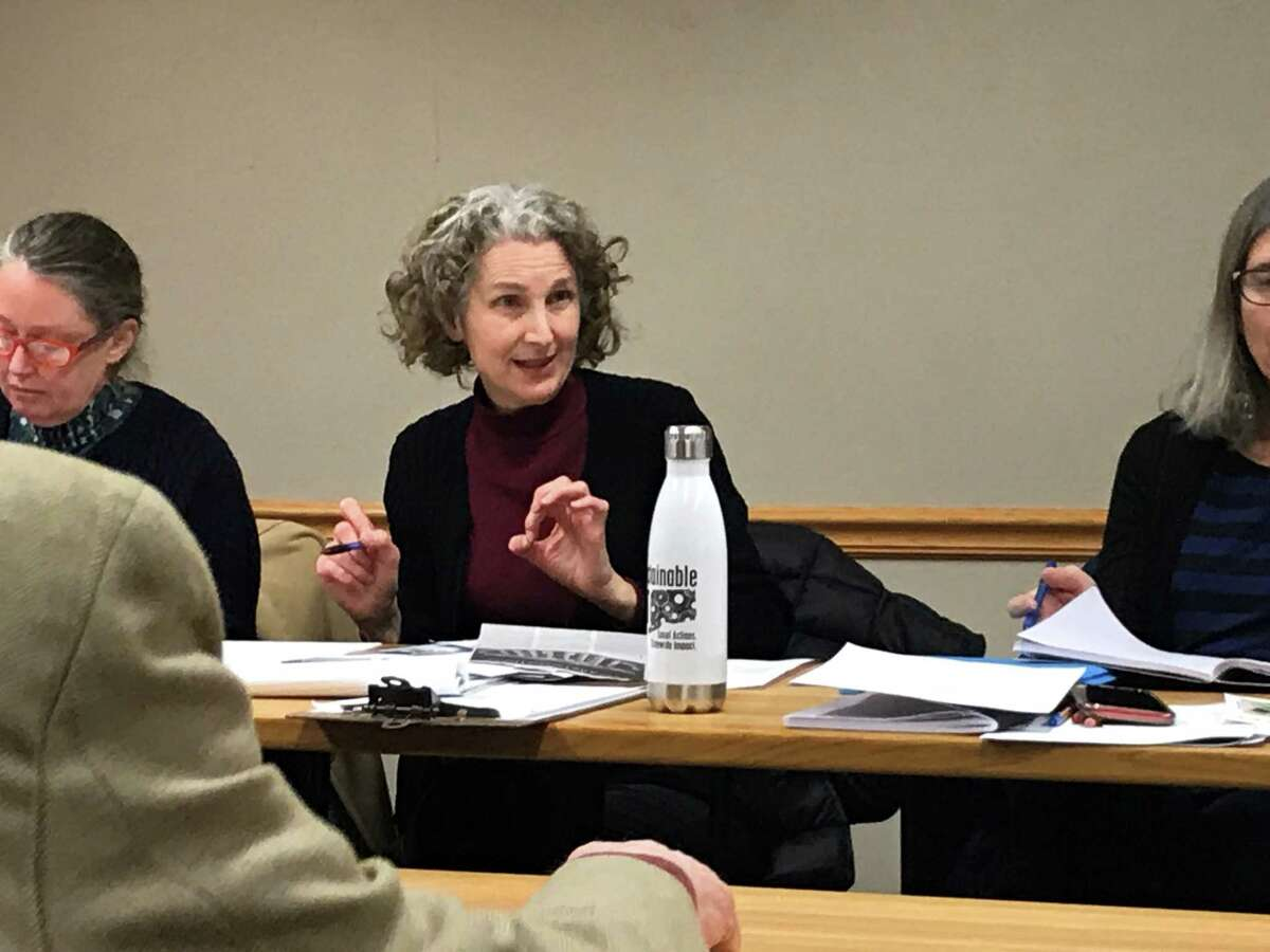 Laura Cahn, chairwoman of New Haven's Environmental Advisory Council, at a Feb. 5, 2020, meeting.