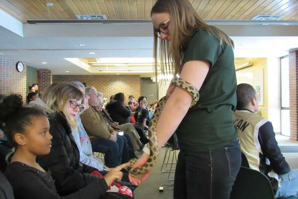 Lindsey Harrell holds out a western fox snake for people to pet during Snakes Alive! on Saturday, Feb. 15 at the Chippewa Nature Center.