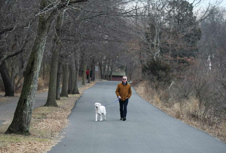 A man walks his white golden retriever, during Safe Roads Sundays at Greenwich Point Park in Old Greenwich, Conn. Sunday, Feb. 16, 2020. Photo: File / Tyler Sizemore / Hearst Connecticut Media / Greenwich Time