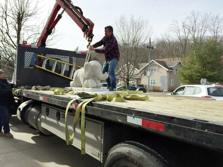 Juan Carlos Olivares, a worker for Wilton Library, harnesses the 800-pound elephant statue to grace the library's entrance. The elephant joins one other pachyderm and two hippos in the library's menagerie. Photo: Patricia Gay /Hearst Connecticut / / Wilton Bulletin