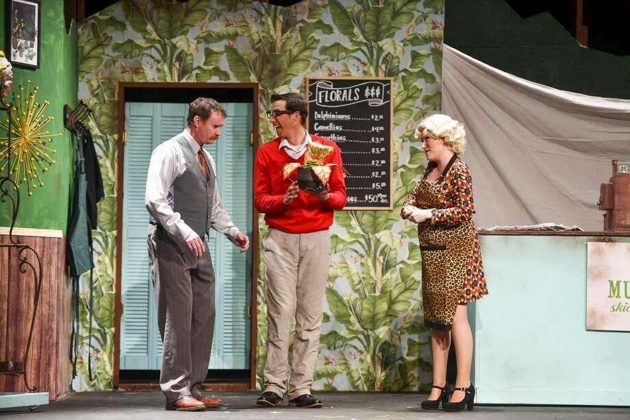 Joe Weaks as Mr. Mushnik, Tyler Lillestol as Seymour as Sara Lillestol as Audrey rehearse Little Shop of Horrors on Monday, Feb. 17, 2020 at Permian Playhouse. Jacy Lewis/Reporter-Telegram Photo: Jacy Lewis/Reporter-Telegram