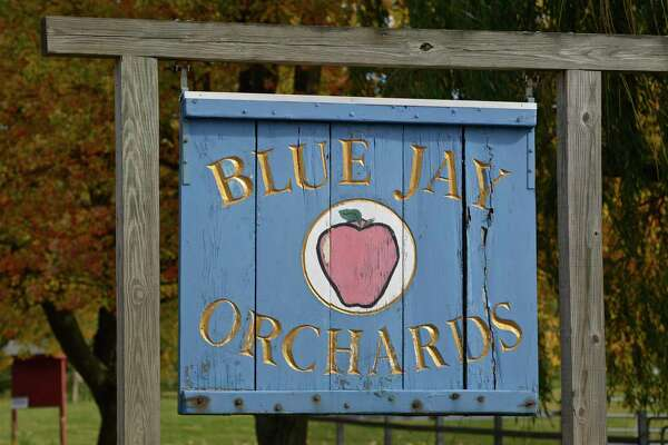Blue Jay Orchards, in Bethel, is a popular fall tourist destination for people from the Tri-State area. Apple picking, pumpkins, hay rides and food is available. Wednesday, October 14, 2015, in Bethel, Conn.