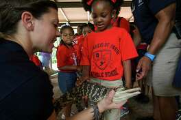 St. Francis of Assissi student Aryja Jamison gets a close look at a baby American alligator at the newly opened Kathrine G. McGovern Texas Wetlands exhibit at the Houston Zoo Friday, May 24, 2019, in Houston. The exhibit features three native Texas species; bald eagles, whooping cranes, and American alligators in a wetland habitat.