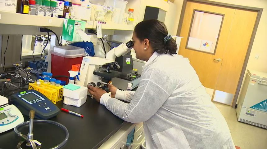 Seattle scientists, partners closing in on coronavirus vaccine