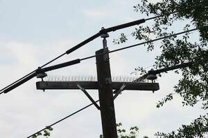 "Power lines with ""raptor guards"" (conductor covers), that were retrofitted by CenterPoint Energy near the site of a bald eagle's nest, Thursday, March 29, 2012, in Baytown. At least seven bald eagles have died because of electrocution in East Texas over the past year. Power poles and lines are particularly attractive to birds, especially big birds of prey. The problem happens when wires with the potential to cause electrocution are placed too close together - within the distance of an eagle's wing span, for example. The deaths come as bald eagles, once endangered, are flourishing again and no longer in need of the protections of the federal Endangered Species Act. ( Karen Warren / Houston Chronicle )"