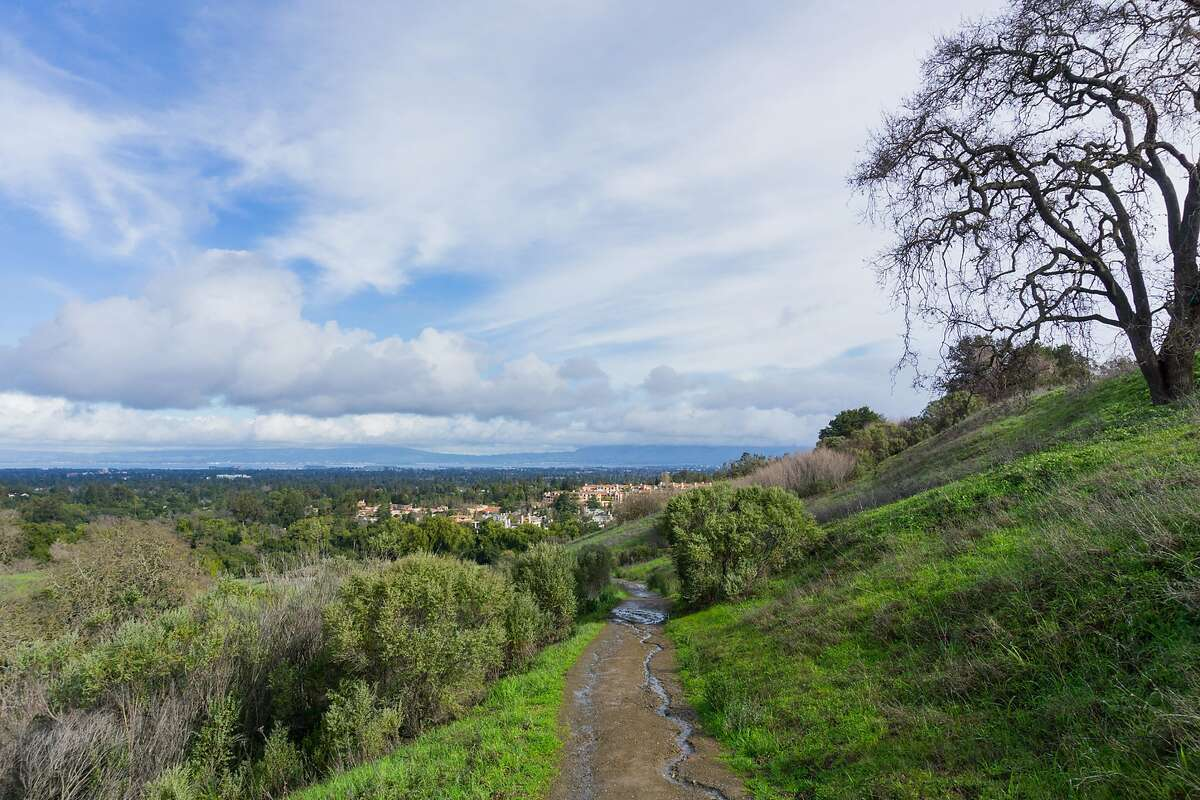 A panoramic view in Rancho San Antonio County Park in south San Francisco bay, Calif. A mountain lion attacked a 6-year-old girl Sunday while she was walking on a trail at the Rancho San Antonio County Park and Open Space Preserve in Cupertino. (Andrei Gabriel Stanescu/Dreamstime/TNS)