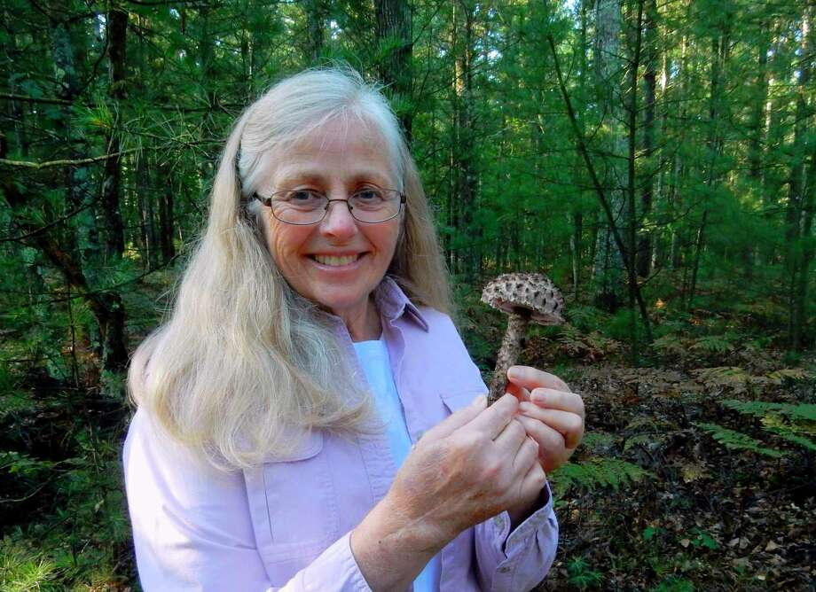 "State-certified mushroom expert, Linda Scribner holds a late summer mushroom called ""Old Man of the Woods."" Scribner will showcase a variety of fungus specimens during the Vogue Theatre's showing of ""Fantastic Fungi."" (Courtesy Photo)"