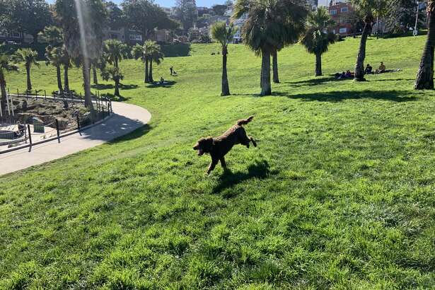 FILE - Sunny, unseasonably warm weather is in the forecast for the San Francisco Bay Area on Feb. 21, 2020.