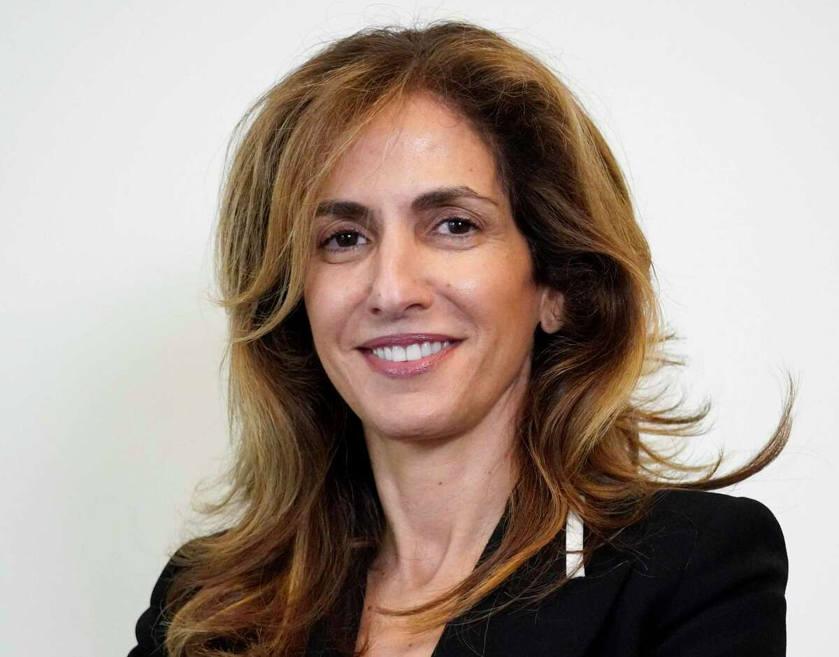 Sima Ladjevardian, candidate for US Rep 2 (D).
