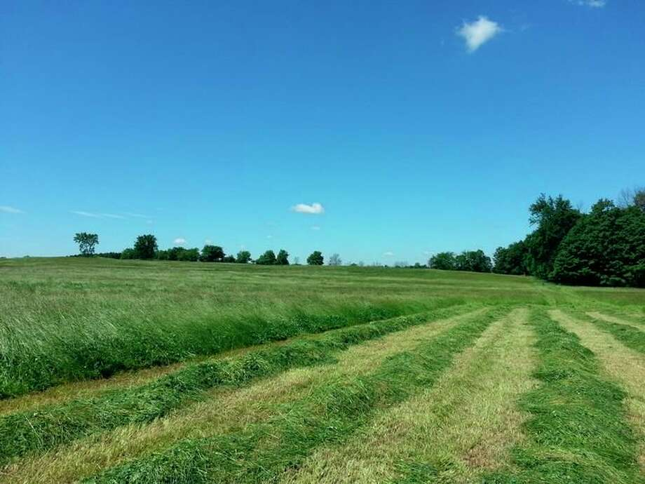 Michigan State University Extension will be hosting four workshops to help farmers learn to maximize their forages. (MSUE/Courtesy Photo)