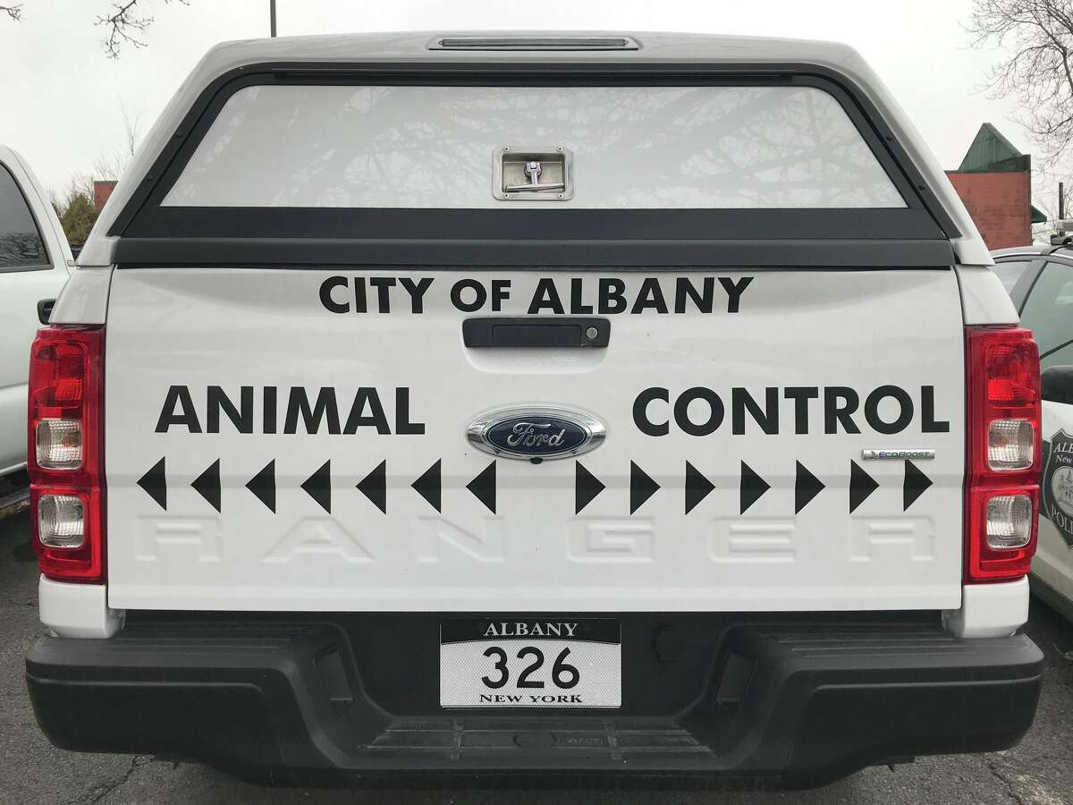 A photo of a City of Albany Animal Control vehicle.
