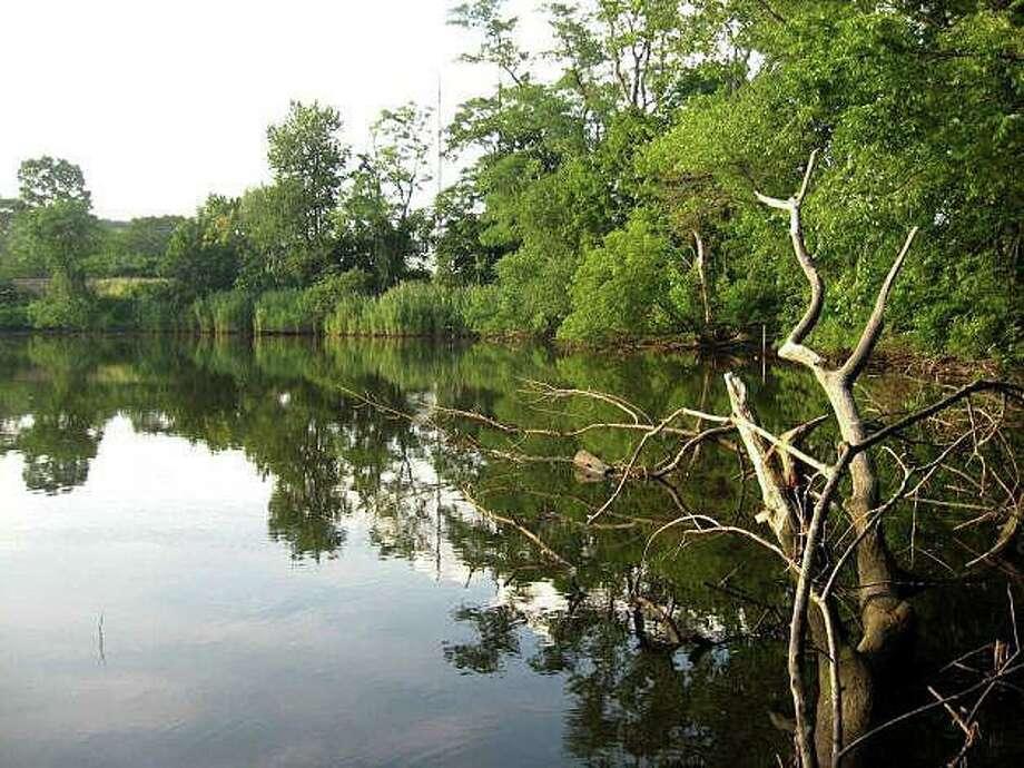 The Mill River in Fairfield Photo: File Photo / Fairfield Citizen