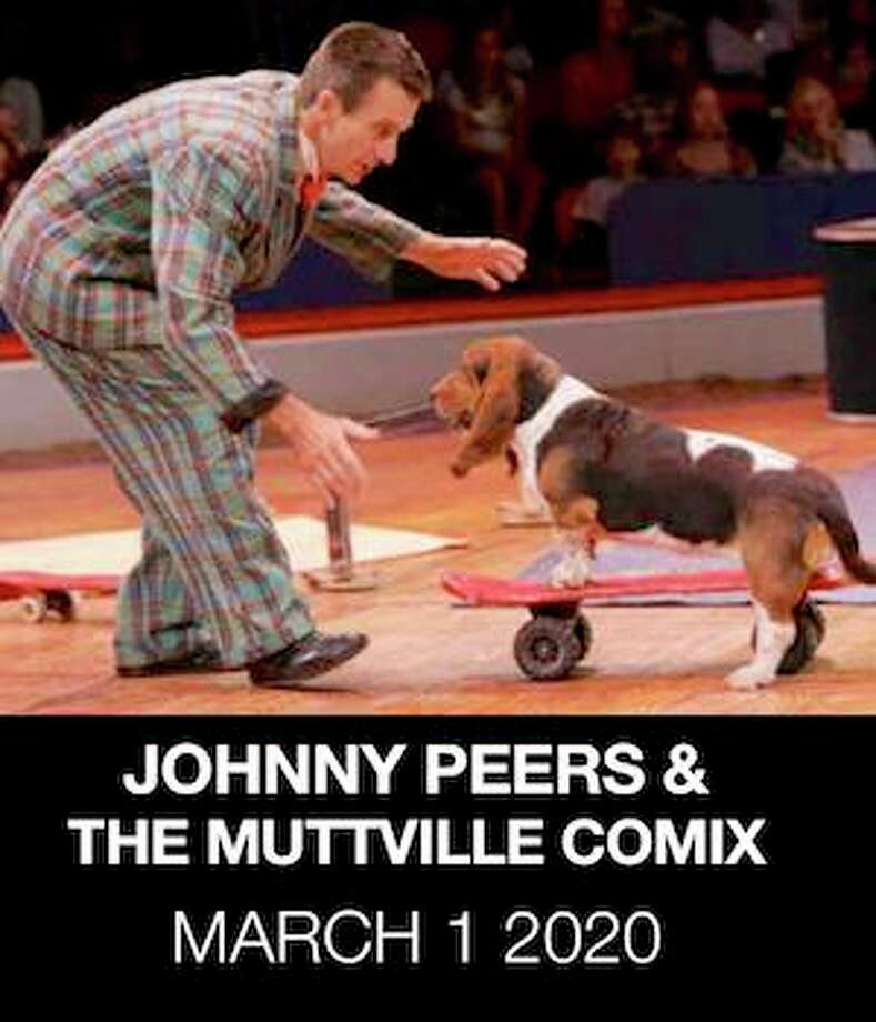 Johnny Peers and The Muttville Comix-Canine Comedy Adventure Show, at the Palace Danbury, on March 1, 1 p.m. Photo: /