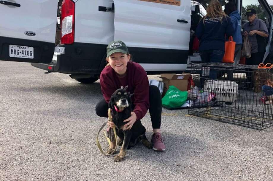 Laci Cansler-Pitt is running in a 50-mile race to help raise money for Albert's Dog Lounge. Photo: Courtesy Of Laci Cansler-Pitt / EyJpdiI6InMxU0JlaTFhYmRXRTVCMFFmcXlcL2d3PT0iLCJ2YWx1ZSI6IlFURkdkelhicXFQa1JmeWtDTkVGUGczc091SWM5WHFOQWw4c1lhZUhGZFpMSmkxcmhiVDdp