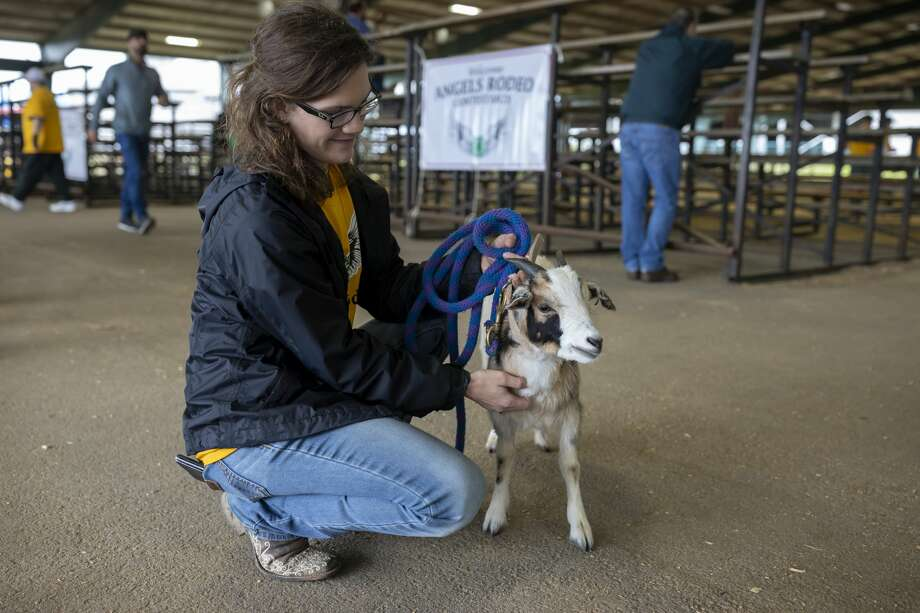 Jessica Nicholas pets Oreo at Angel's Rodeo at the Montgomery County Fairgrounds Equestrian Center, Sunday, March 1, 2020. Nicholas is a first year volunteer. Photo: Gustavo Huerta/Staff Photographer
