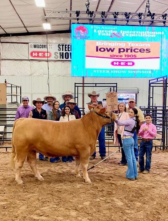 Shown is Grand Champion Steer Chelsea Cremar. Photo: Courtesy