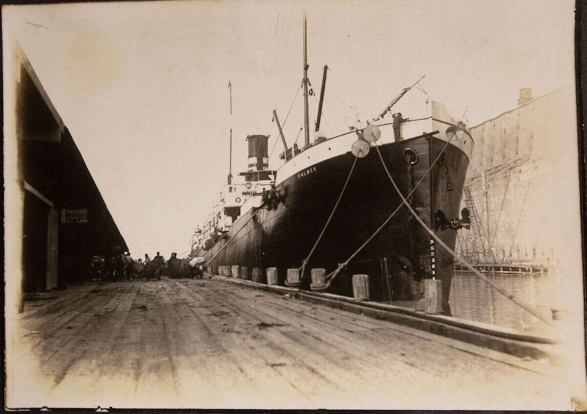 As a port, Galveston was a prime location for a plague outbreak.