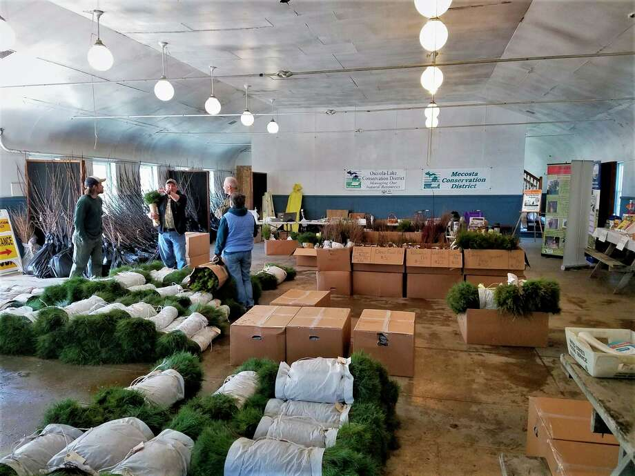 The 2020 Spring Seedling Sale is a joint program with the Mecosta County Conservation District and the Osceola-Lake Conservation District. This year's sale began Jan. 1 and is set to end April 1. (Courtesy photo)