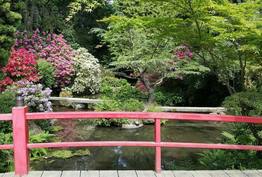 1. Kubota Gardens: Beautiful Japanese architecture is interlaced with peaceful streams, idyllic waterfalls and ponds in this hidden gem of a park which holds impactful history for Seattle's Japanese community. The high-arched moon bridge surrounded by blooming flowers makes for a photo-op that is both serene and perfect for spring.