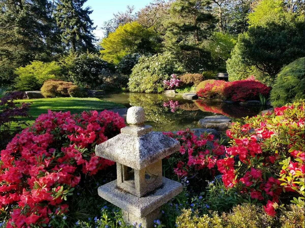Itching for spring? Click through the slideshow to see the best parks and gardens around Seattle to see blooming flowers.