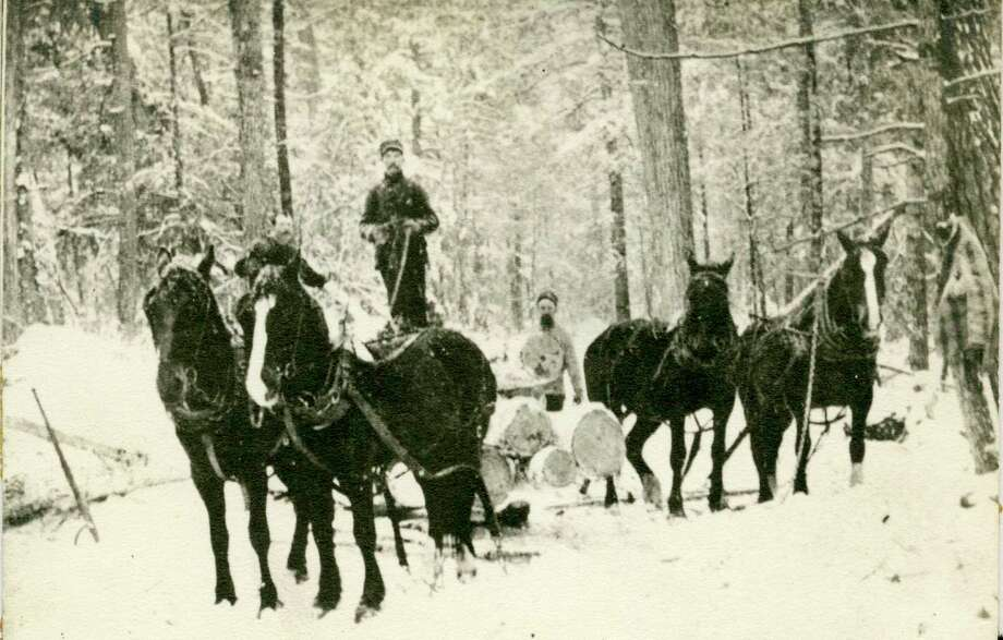 During the winter months during the logging era in Manistee County sleighs were often used to remove the logs from the woods by the lumberjacks.
