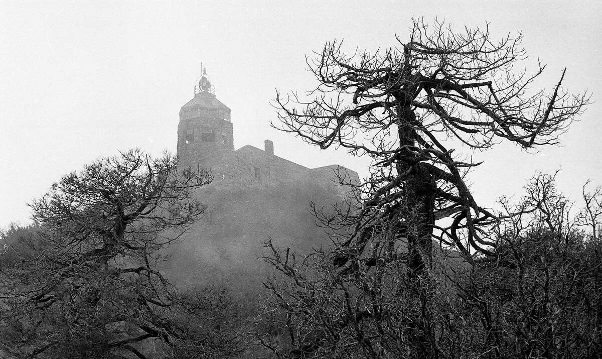 Photos of Mount Diablo State Park for a Doss Bay Area at your feet column, December 14, 1982
